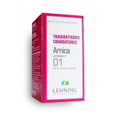 Arnica Complexe N°01 Lehning - Flacon 30 ml