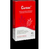 Cartidol articulations sensibles et raideurs articulaires - 60 gélules végétales