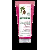 Klorane Nutrition crème de douche au beurre de Cupuaçu Bio - Fleur de Groseillier 200 ml