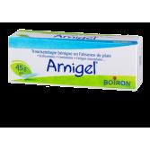 Arnigel Boiron Traumatologie bénigne - Gel homéopathique