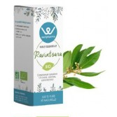 Huile essentielle Ravintsara BIO 10 ml - Wellpharma