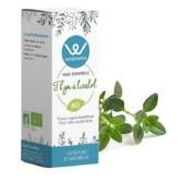 Huile essentielle Thym à Linalol BIO 5 ml - Wellpharma