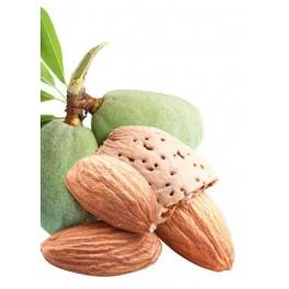 https://www.pharmacie-place-ronde.fr/14622-thickbox_default/huile-vegetale-amande-douce-bio-50-ml-wellpharma.jpg