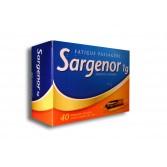 Sargenor 1 g Fatigue passagère - 40 ampoules