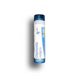 http://www.pharmacie-place-ronde.fr/7804-thickbox_default/chamomilla-vulgaris-boiron-tube-granules-et-doses.jpg