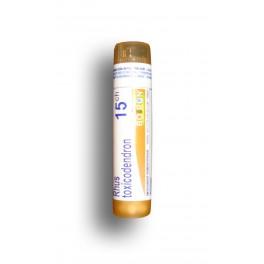 https://www.pharmacie-place-ronde.fr/7931-thickbox_default/rhus-toxicodendron-boiron-tube-doses-et-granules.jpg