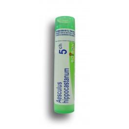 https://www.pharmacie-place-ronde.fr/8155-thickbox_default/aesculus-hippocastanum-boiron-tubes-granules-.jpg