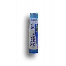 https://www.pharmacie-place-ronde.fr/8267-thickbox_default/calcarea-phosphorica-boiron-tubes-granules-et-doses.jpg