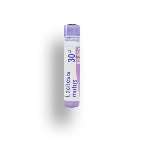 Lachesis mutus Boiron tube granules et doses - 4 CH 5 CH 7