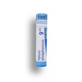 https://www.pharmacie-place-ronde.fr/8507-thickbox_default/kalium-phosphoricum-boiron-tubes-granules-et-doses.jpg