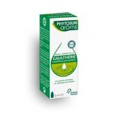 Huile essentielle Gaulthérie Phytosun arôms - Flacon 10 ml